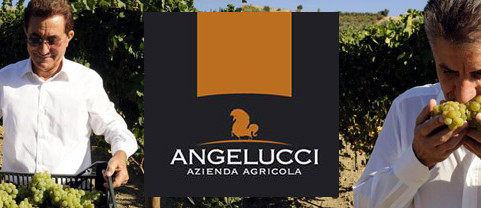 Cantina Angelucci